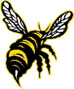 barbados-bees.jpg