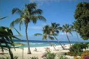 coconut-court-beach-area-barbados.jpg