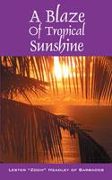 a-blaze-of-tropical-sunshine.jpg