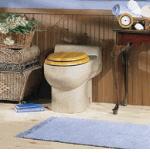 waterless-toilet-barbados.jpg