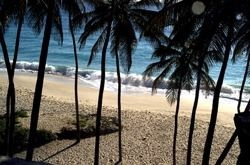 barbados-harry-smith-beach.jpg