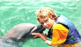 barbados-dolphin-ocean-park.jpg