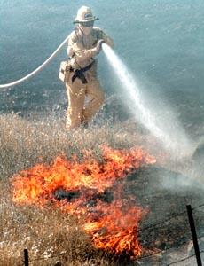 barbados-corruption-fire.jpg