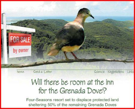 grenada-dove-national-park.jpg
