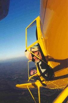 hammerhead-aerobat.jpg
