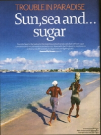 sugar-barbados-cricket.jpg