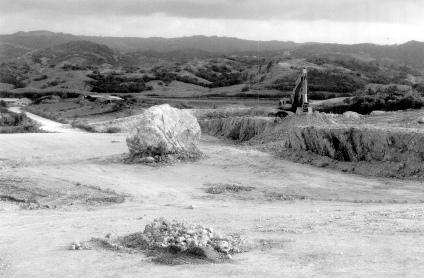 greenland-boulder-barbados.jpg