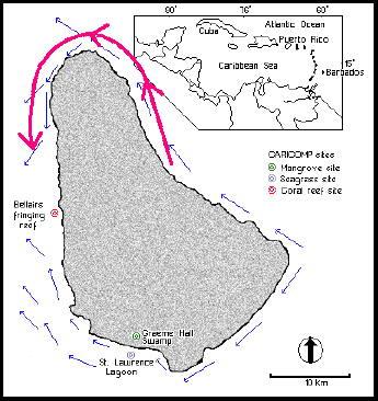 barbados-tides.jpg
