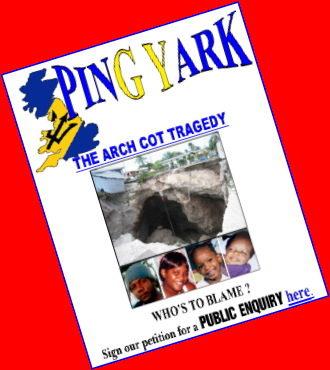 ping-yark-feb09