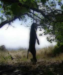 Softened Photo Of Hanged Dog