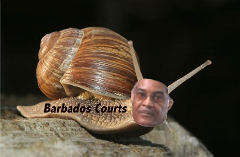 barbados-snail-court-justice