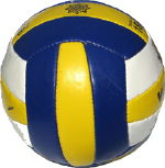 Barbados Bahamas Volleyball Theft