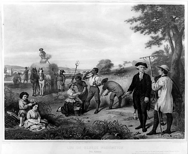 Female slavery in the United States