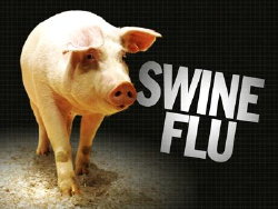 Barbados Swine Flu Death