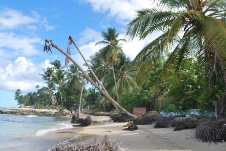 Destroyed beach barbados