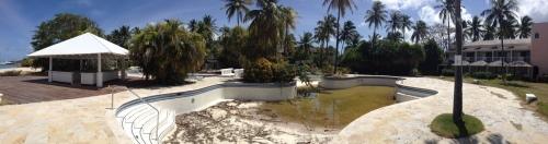 2013 Almond Barbados