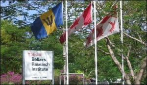 Barbados Reef Research