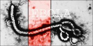 Barbados ebola